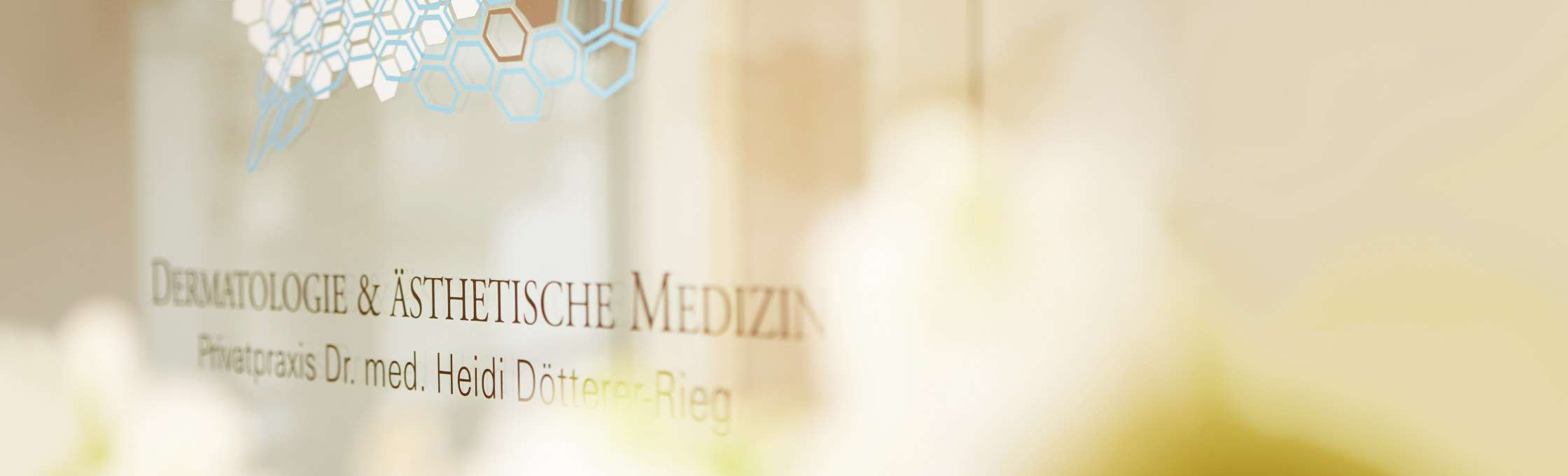 The company logo of the private dermatologist's office Dr. med. Heidi Dötterer-Rieg in the Große Bockenheimer Straße 41, Frankfurt am Main. The four-color logo is glued to a transparent glass surface. In the foreground are white orchids.